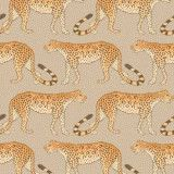 Cole & Son Leopard Walk behang