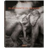teNeues Elephants In Heaven tafelboek