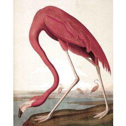 KEK Amsterdam Flamingo behangpaneel