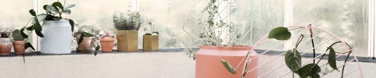 Plantenbakken buiten